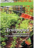 Дендрарий Оренбургского госагроуниверситета