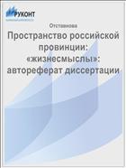Пространство российской провинции: «жизнесмыслы»: автореферат диссертации
