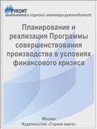 Планирование и реализация Программы совершенствования производства в условиях финансового кризиса