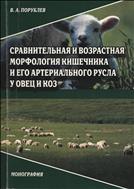 Сравнительная и возрастная морфология кишечника и его артериального русла у овец и коз