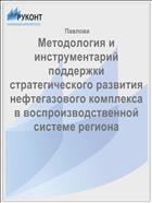 Методология и инструментарий поддержки стратегического развития нефтегазового комплекса в воспроизводственной системе региона