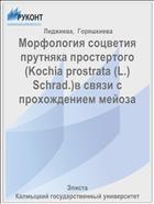 Морфология соцветия прутняка простертого (Kochia prostrata (L.) Schrad.)в связи с прохождением мейоза