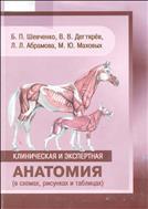 Клиническая и экспертная анатомия( в схемах,рисунках и таблицах)
